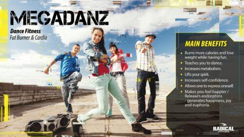 MEGADANZ(メガダンス)
